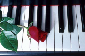 rose-clavier-piano.png